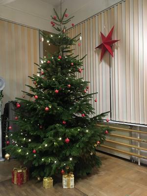 Weihnachtsbaum im großen FRV Saal mit Weihnachtsstern und Geschenken